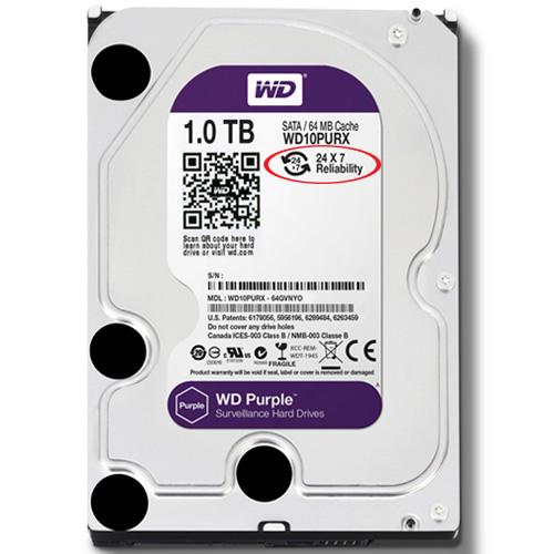 Ổ cứng Western Purple HDD 1TB giá rẻ