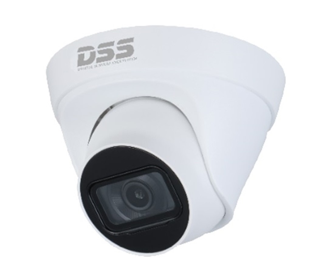 Camera quan sát IP DAHUA DS2431TDIP-S2 (4.0 megapixel, hồng ngoại 30m) chính hãng